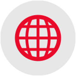 World Globe Red Icon
