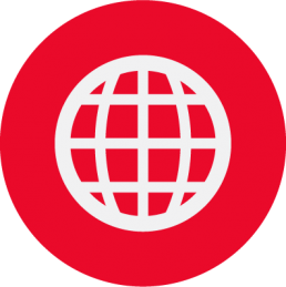 Globe Icon in white and red