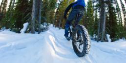 Wide shot of man riding fat-tire bike through snow.